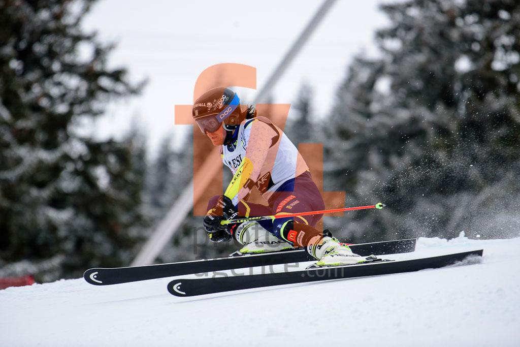 2016/17, European Cup, FIS, GS, Jasna (SVK), Men, ROENNGREN Mattias (SWE), Season