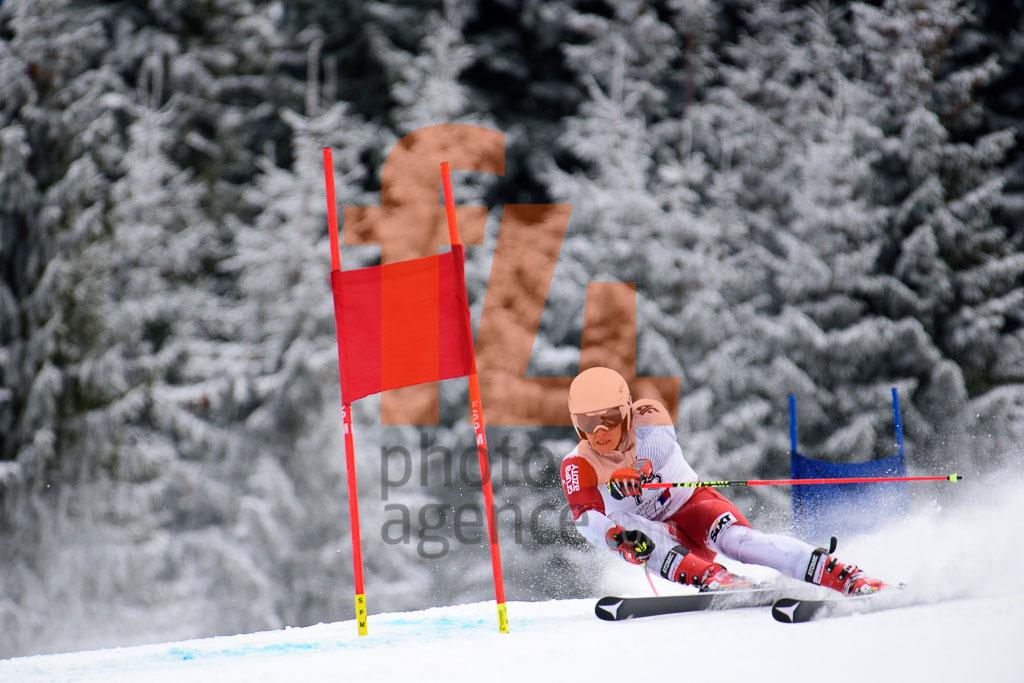 2016/17, European Cup, FIS, GS, HABDAS Piotr, Jasna (SVK), Men, Season