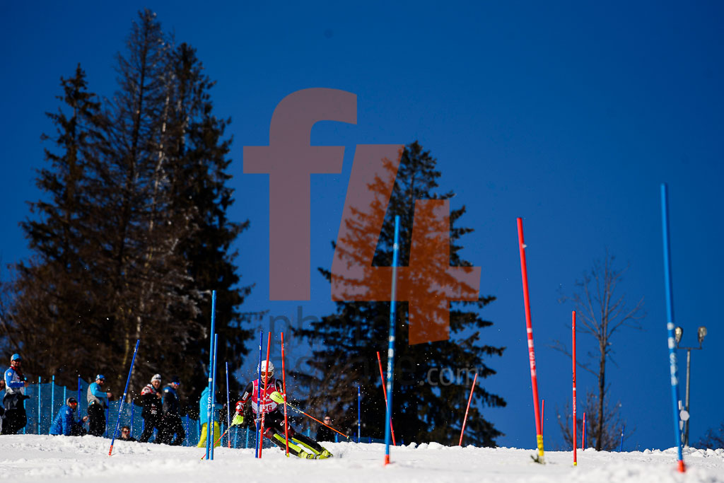 2016/17, European Cup, FIS, KOLEGA Elias (CRO), Men, SL, Season, Zakopane (POL)
