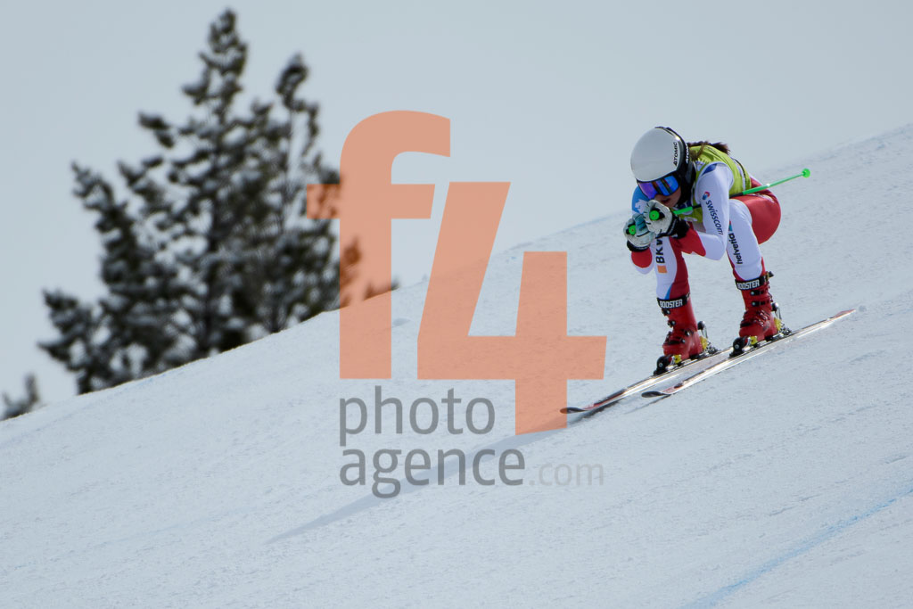 2017/18, DH TRA, El Tarter (AND), European Cup, FIS, JENAL Stephanie  (SUI), Season, Soldeu (AND), Women