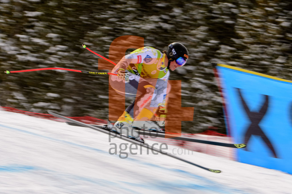 2017/18, DH, El Tarter (AND), European Cup, FIS, GAUER Nico  (LIE), Men, Season, Soldeu (AND)