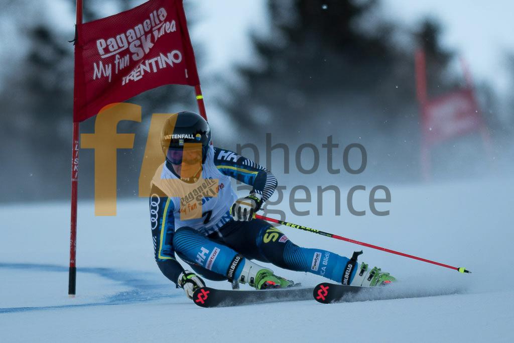 Andalo Paganelle (ITA), European Cup, FIS, GS, STAALNACKE Ylva (SWE), Women