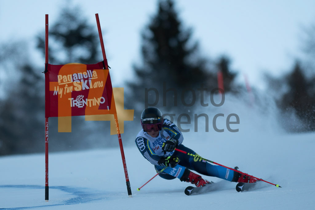 Andalo Paganelle (ITA), European Cup, FIS, FJAELLSTROEM Magdalena(SWE), GS, Women