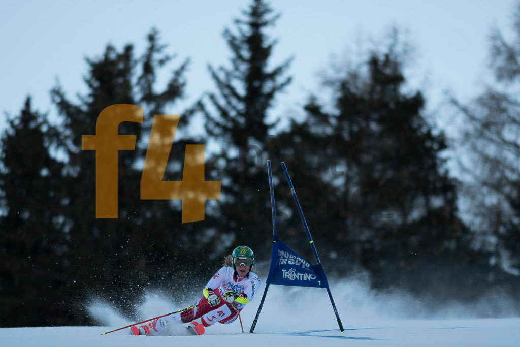 Andalo Paganelle (ITA), European Cup, FIS, GS, LIENSBERGER Katharina (AUT), Women