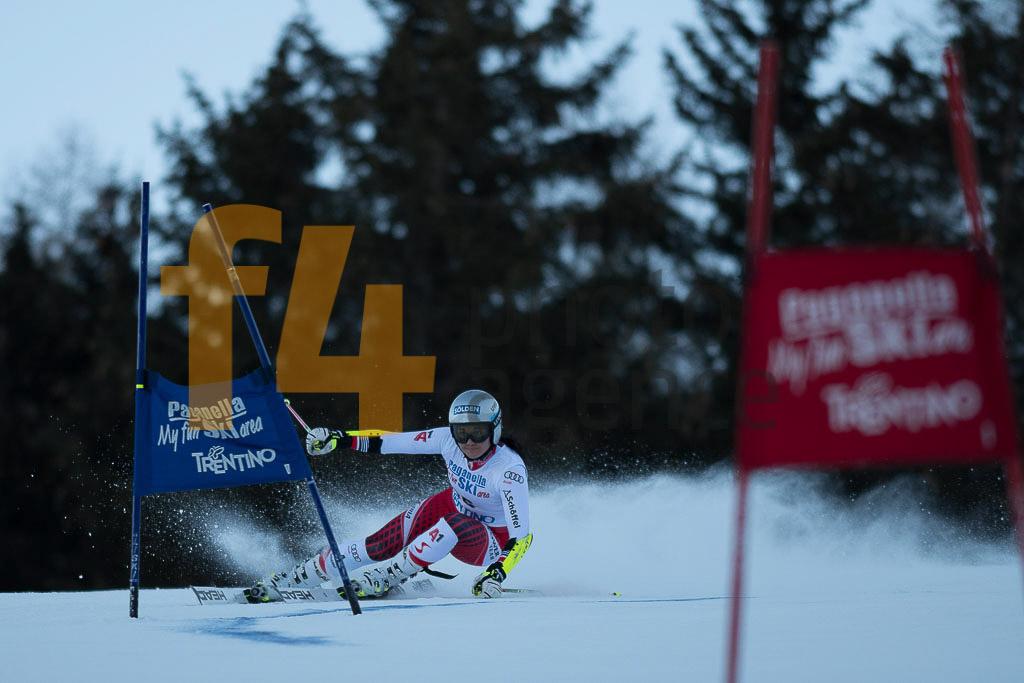Andalo Paganelle (ITA), European Cup, FIS, GRITSCH Franziska(AUT), GS, Women