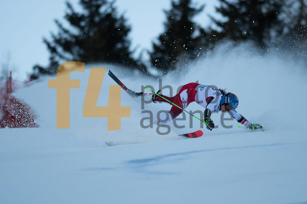 Andalo Paganelle (ITA), European Cup, FEST Nadine(AUT), FIS, GS, Women