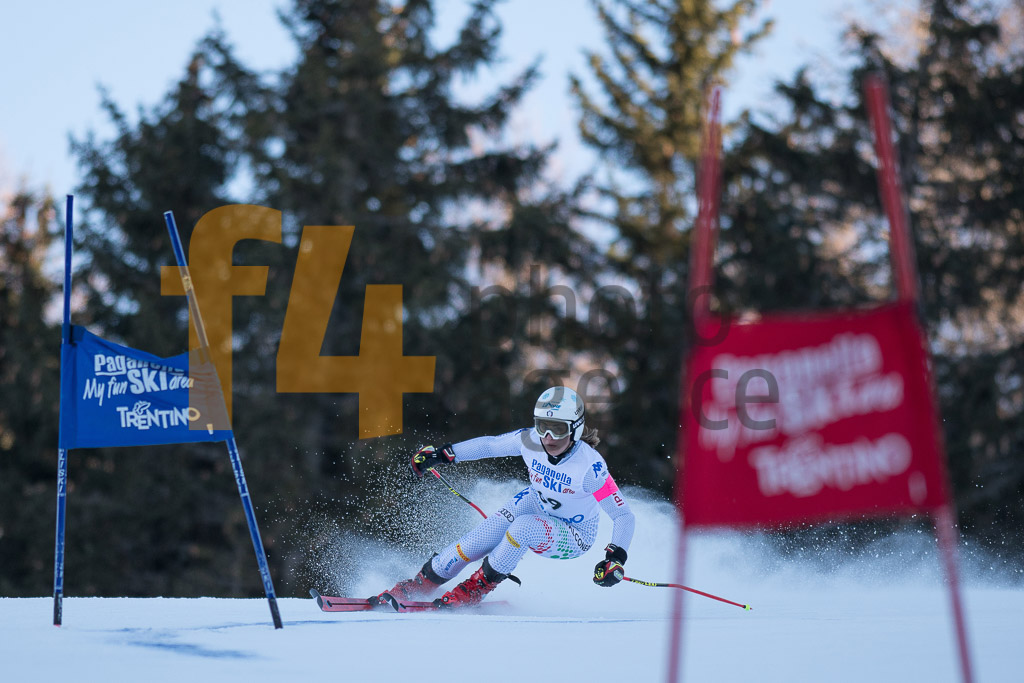 Andalo Paganelle (ITA), European Cup, FIS, GS, SARACCO Carlotta (ITA), Women