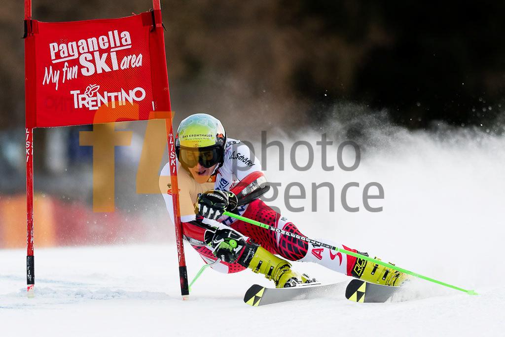 2018/19, Andalo Paganelle (ITA), European Cup, FIS, GS, HAASER Raphael (AUT), Men, Season