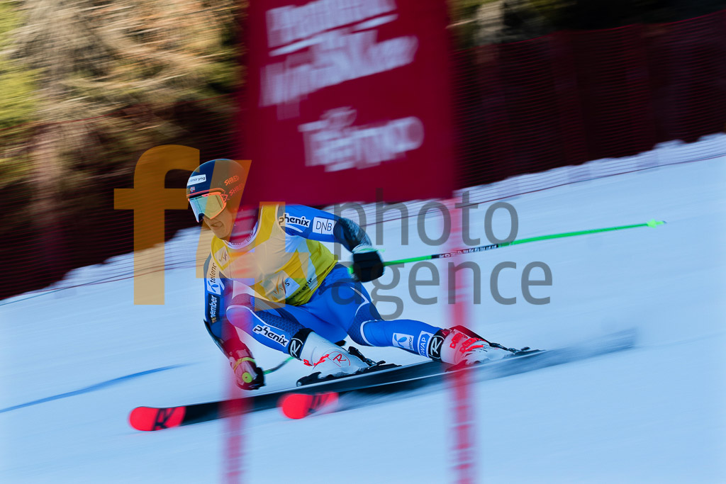2018/19, Andalo Paganelle (ITA), European Cup, FIS, GS, Men, SOLHEIM Fabian Wilkens  (NOR), Season